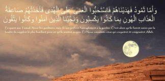 Prophètes Houd et Salih