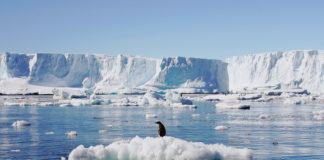 vingt-lAntarctique-perdu-3-000-milliards-tonnes-glace-selon-calculs-84-scientifiques-parus-Nature-quelques-jours-1_0_729_486